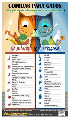 Cats Toys Ideas - Pour les chats - Ideal toys for small cats I Love Cats, Crazy Cats, Cute Cats, Funny Cats, Homemade Cat Food, Cat Info, Kitten Care, Kitten Food, Kitten Treats