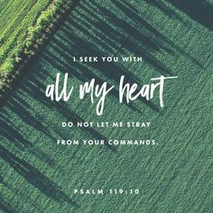 With my whole heart have I sought thee: O let me not wander from thy commandments. Psalms 119:10 KJV http://bible.com/1/psa.119.10.KJV