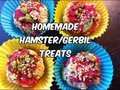 DIY Treats for Hamsters and Gerbils| Cupcakes with icing and sprinkles - YouTube
