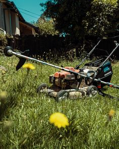 Call 0447 326 937 for a free quote for lawn mowing service Melbourne - we offer great rates/prices for lawn mowing & gardening services. We do lawns, servicing Darebin & Banyule. Above Ground Pool, In Ground Pools, Beautiful Day, Most Beautiful Pictures, Mowing Services, Lawn Maintenance, Kiddie Pool, Lawn Care, Trail Running