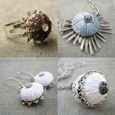 Google Image Result for http://www.thebaglady.tv/assets_c/2009/03/sea_urchin_jewellery-thumb-430x430-82866.jpg