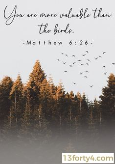 God takes care of the birds and you are more valuable than them! Matthew is such a comforting Bible verse! Healing Scriptures, Prayer Scriptures, Bible Teachings, Faith Prayer, Devotional Quotes, Prayer Quotes, Bible Verses Quotes, Christian Messages, Christian Quotes