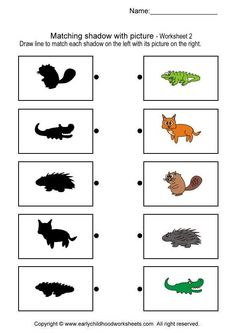 Printable brain teaser worksheets for kids in preschool, kindergarten, grade draw line to match each shadow on the left with its picture on the right. Kindergarten Math Worksheets, Preschool Curriculum, Preschool Math, Toddler Learning Activities, Montessori Activities, Animals That Hibernate, Visual Perception Activities, English Worksheets For Kids, Groundhog Day