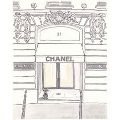 Paris Illustration - Chanel Boutique Cambon - giclee print ($25) ❤ liked on Polyvore