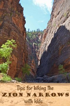 Tips for hiking the Zion Narrows with kids via TipsforFamilyTrips.com. #Utah