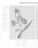"Gallery.ru / hoachi - Альбом ""186"""