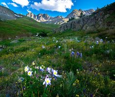 Missing summer in the Rockies, American Basin Colorado [OC] Outdoor Photography, Nature Photography, Travel Photography, Loose Weight, Planet Earth, Beautiful Homes, Beautiful Scenery, Travel Photos, Colorado