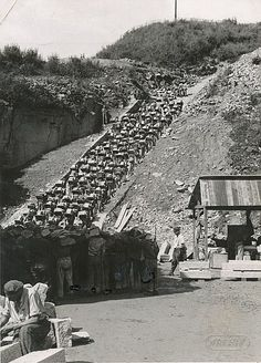 The Holocaust - Wikipedia