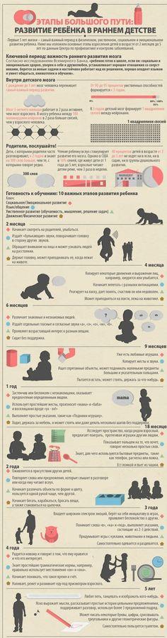 Развитие ребёнка в раннем детстве инфографика, развитие ребёнка, Детство, Дети, длиннопост