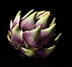 I love all artichokes, esp. the tiny purple artichoke