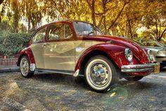 1969 vw classic bug ~ love it!