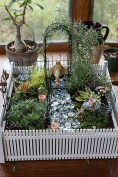Cómo hacer un jardín en miniatura e imágenes de algunos preciosos                                                                                                                                                                                 Más