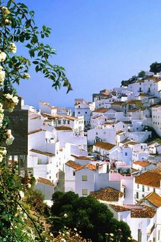 looks so peaceful- Mountain village Casares, Malaga, Spain. Loved this part of Spain. Places Around The World, The Places Youll Go, Travel Around The World, Places To See, Wonderful Places, Beautiful Places, Places To Travel, Travel Destinations, Mountain Village