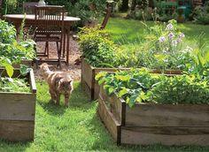 Des légumes au carré : les potagers en carrés