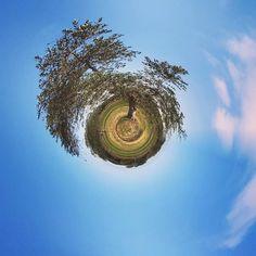 Gli #ulivi? Sempre un'infinita bellezza. Buongiorno Igers!      #igersitalia #igersitaly #instaitalia #instagramitalia #volgoitalia #weareinpuglia #puglia #salento #lecce #igerslecce #igerspuglia #exklusive_shot #passionpassport #visualsoflife #photowall #liveauthentic #huntgram #whatitalyis #perspective #ig_italy #italia365 #coloridipuglia #nelsalento #agameoftones #top_italia_photo #miniworld #tinyplanet #tinyworld