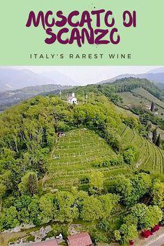 Moscato di Scanzo, the rarest italian wine - Wine in northern Italy, the best Italian wine, Italian wine family, italian winery #italianwine
