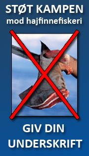 Din underskrift er med til at forbyde hajfinnefiskeri!