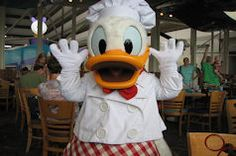 #DonaldDuck at a character meal. The original angry bird. (Saw that on a tshirt in Downtown Disney). lol