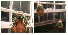 Old bulbs repurposed as xmas decorations