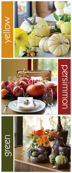 Pumpkins: Different colors- red/persimmon, yellow, green