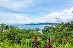 Drake Bay view from Las Caletas Lodge Caletas Beach, Osa Peninsula Costa Rica #vacation #family #nature #cool