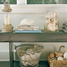 What's the best way to show off a shell collection? | CoastalLiving ...