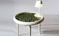 """""""Mesa de Musgos"""" gera eletricidade por meio da fotossíntese"""