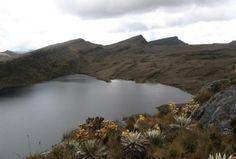 Páramo de Sumapaz - Colombia