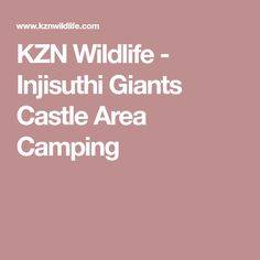 KZN Wildlife - Injisuthi Giants Castle Area Camping South Africa, Wildlife, Castle, Camping, Travel, Campsite, Viajes, Destinations, Traveling