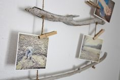 driftwood ideas | Here we have for you some of the best Diy driftwood inspirations