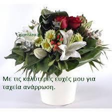 Αποτέλεσμα εικόνας για ευχες για περαστικα στα ελληνικα Crochet Lace, Garden, Plants, Pattern, Garten, Crochet Trim, Lawn And Garden, Patterns, Gardens