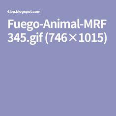 Fuego-Animal-MRF345.gif (746×1015) Lion Art