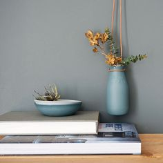 Urban Cartel grey hanging planter | Milk bottle flower vase