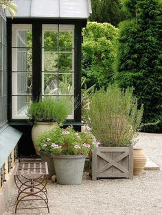 Like: the colors of containers, the clustered look, the fact that they are positioned on the gravel..
