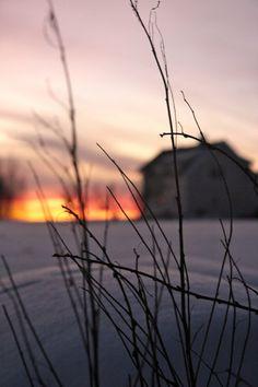 calm snowy winter landscape