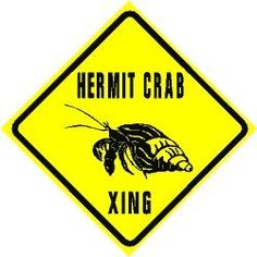 Hermit Crab Xing... Lol... This would be great for my bedroom door...