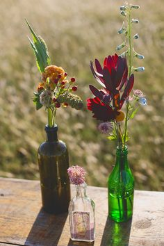assorted floral arrangements in found bottles // photo by Christina Carroll