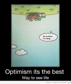 Optimism: A Turtle Can Actually Fly…