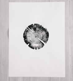 Lodgepole Pine Tree Ring Art Print by LintonArt on Scoutmob