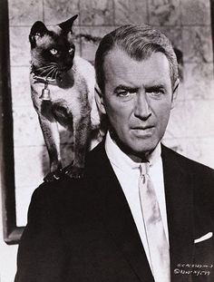 jimmy stewart- I love every single Jimmy Stewart movie I have ever seen and I think I have seen them all!