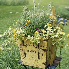 Old crates and containers make wonderful garden planters