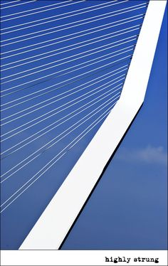 Dutch architecture: the Erasmusbrug @ Rotterdam, the Netherlands.