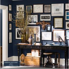 I like this dark blue  Sherwin Williams Naval paint color