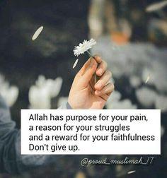 Alhumdullilah:)