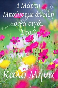 New Month Greetings, Beautiful Pink Roses, Good Morning Inspirational Quotes, Mina, Greek Quotes, Happy Day, Good Night, Instagram, Pictures