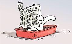 Oggi parliamo di toiletteper gatti. In commercio ne esistono di svariate misure e tipologia e spesso la scelta è difficoltosa e poco consapevole. Le scelta giusta delle toilette per gatti è molto importante per evitare deiezioni improprie dei nostri amici felini Le toilette per gatti possiamo sostanzialmente suddividerle in 6categorie. Conosciamole assieme per individuare quella più adatta a noi e ai nostri micioni! Cassette igieniche aperte Le cassette igienicheaperte sono spesso quelle…
