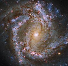 Hubble Takes a Spiral Snapshot | NASA