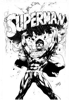 Superman ~ Ed Benes