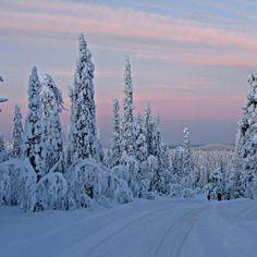 * winter sunset * #silence #europe #beautiful #lapland #scandinavia #winter #nature #Finland #snow #igers #igersscandinavia #ignation #igersfinland #statigram #clouds #webstagram #ig #like #gmy #rscpics #bestoftheday #picoftheday #greatfeed #instafamous #instamood #igeroftheday #sunset #twilight #andrography #sky #clouds - @interlocker- #webstagram