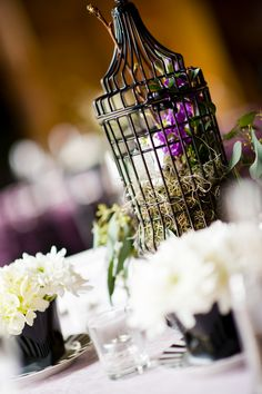centerpieces - birdcages, florals in tea cups from Classic Party Rentals SF
